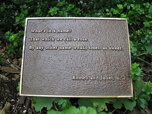 Para facilitar su identificación, se han colocado placas de bronce con citas pertenecientes a las obras o poemas donde aparecen.