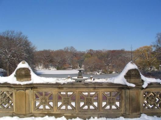 Invierno en Central Park