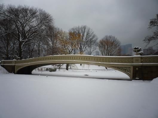 Invierno en Central Park06
