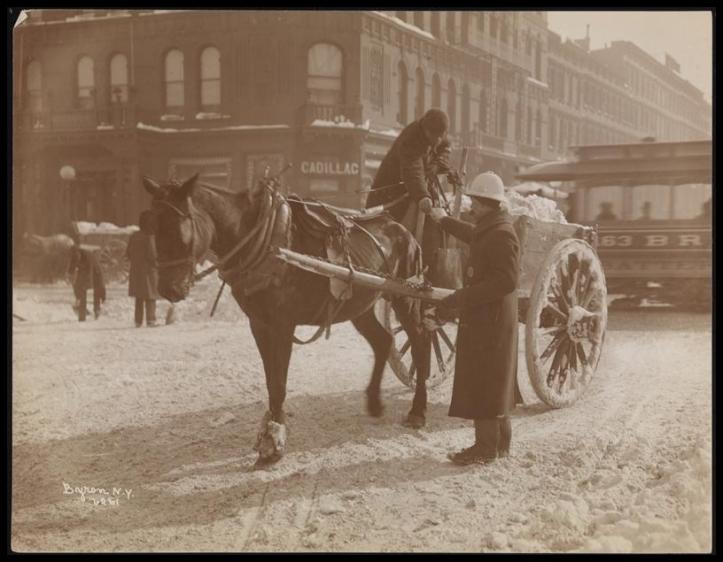 Blizzard 189901