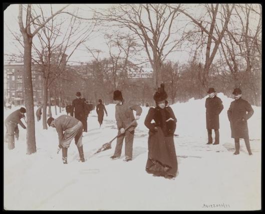 Blizzard 189903