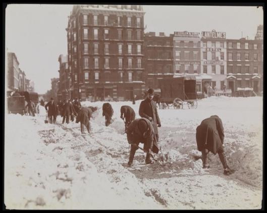 Blizzard 189911