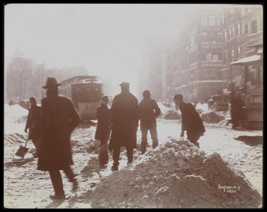 Blizzard 189913