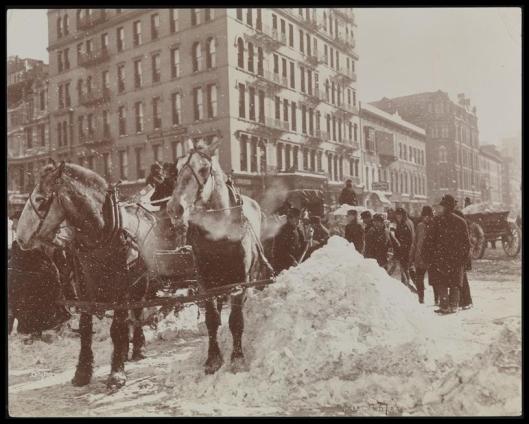 Blizzard 189914