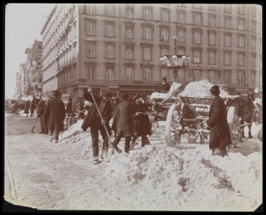 Blizzard 189916