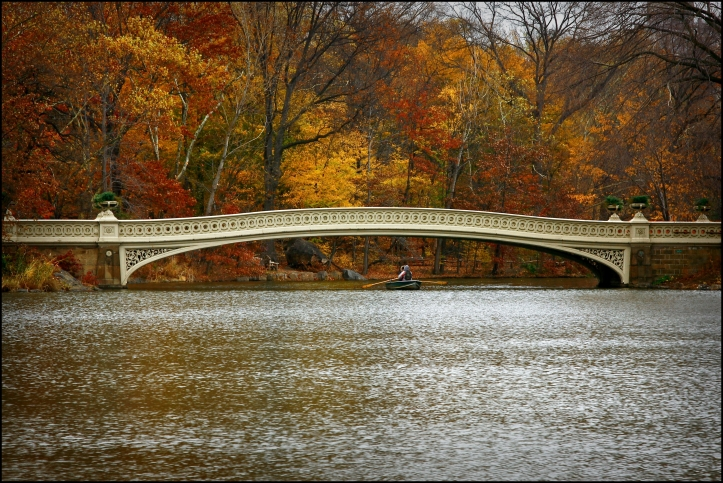 Bow Bridge -Central Park