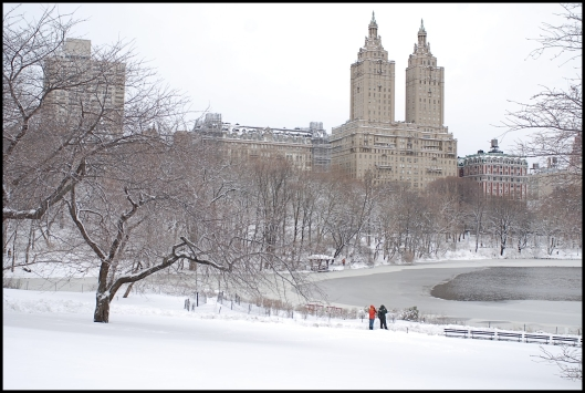 Central Park después de Nemo05