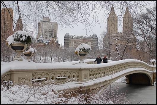 Central Park después de Nemo06