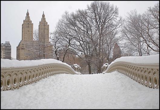 Central Park después de Nemo07