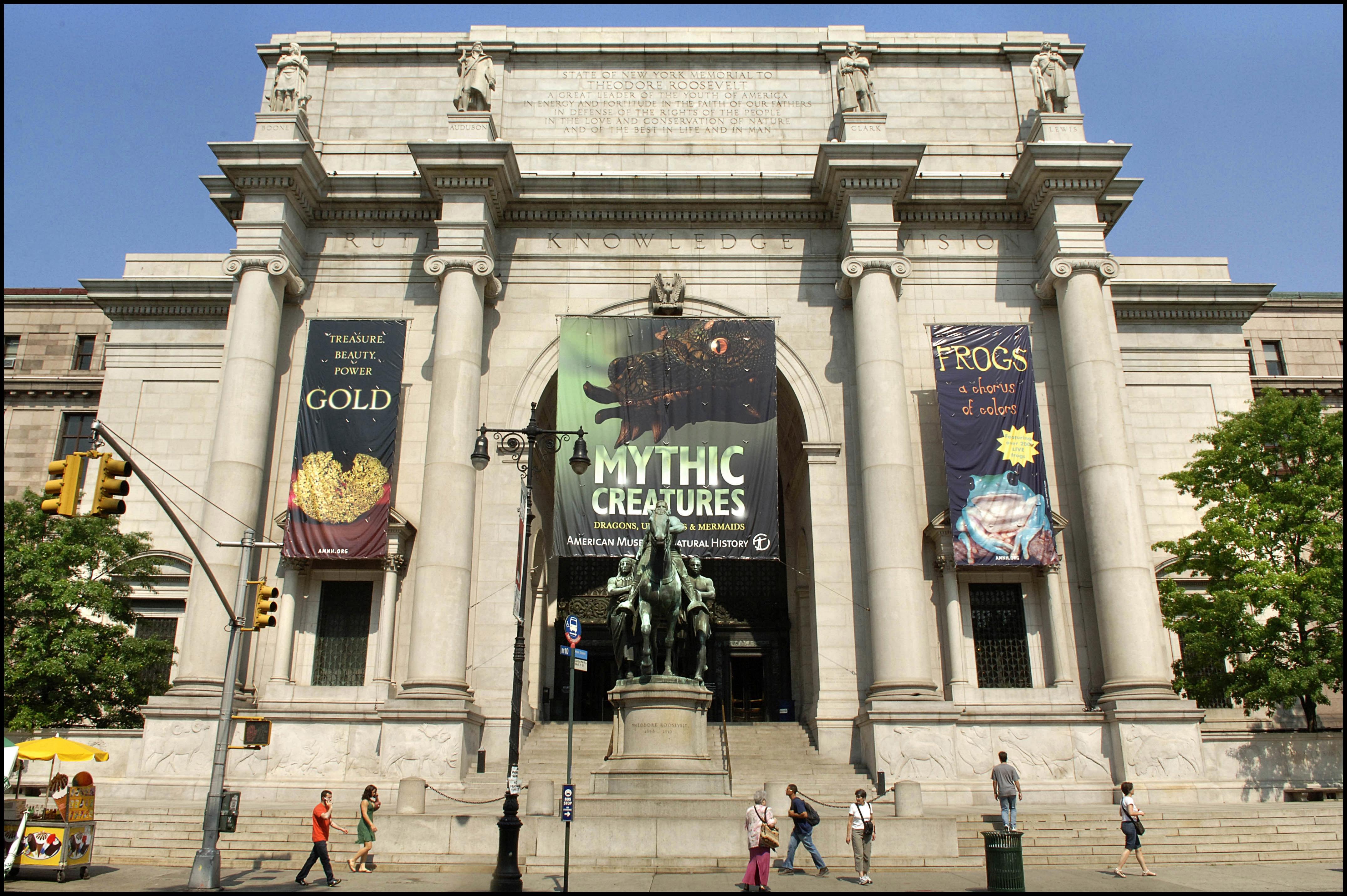 Museo americano de historia natural historias de nueva york for The americano nyc