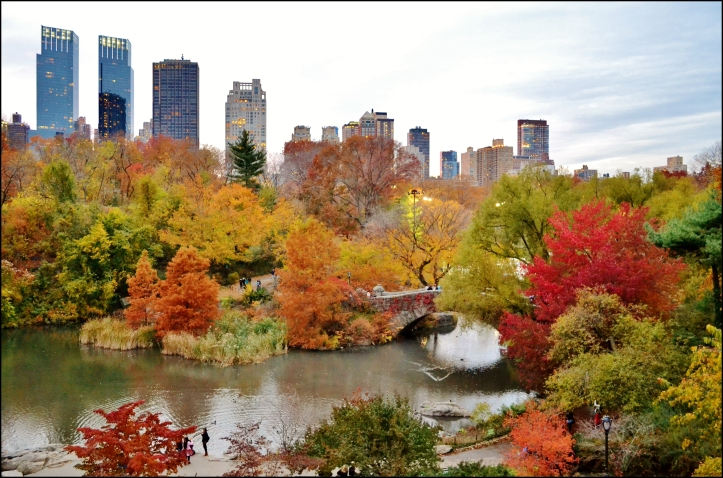 Central Park otoño002