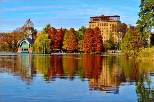 Central Park otoño003