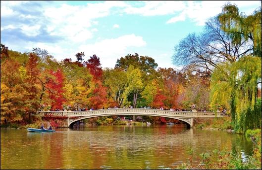 Central Park otoño008