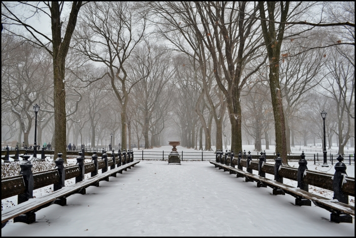 Central Park Winter003