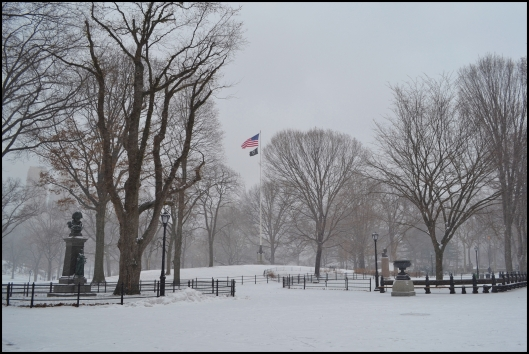 Central Park Winter004