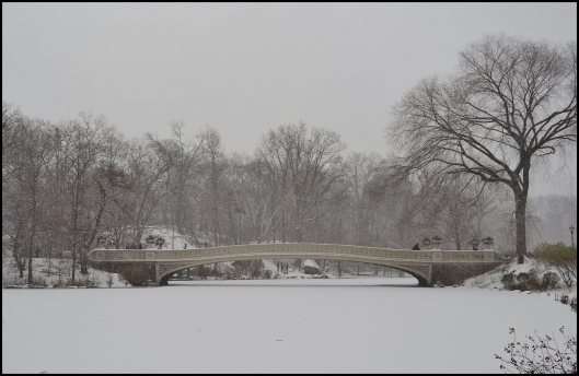Central Park Winter005