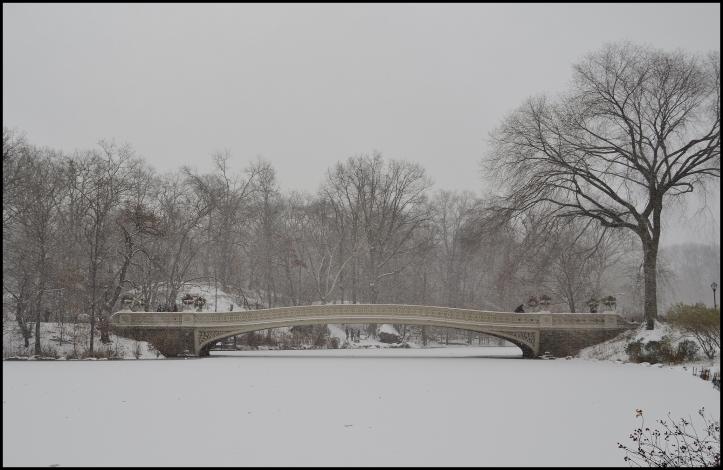 Central Park Winter005