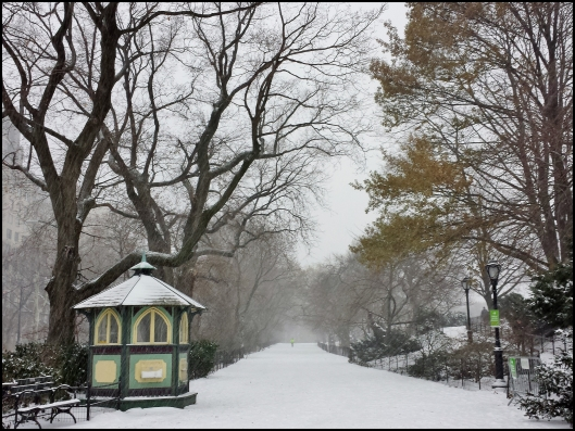 Central Park Winter006