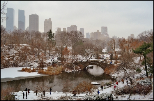 Central Park Winter007