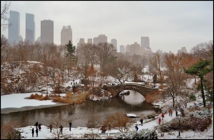 Central Park Winter007