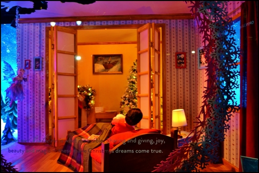 holiday-show-window010