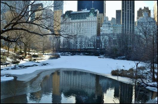 Invierno en Central Park 003