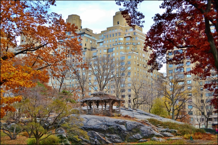 Central Park-A Tree House for Dreaming