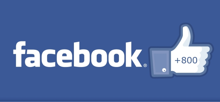 facebook Like 800