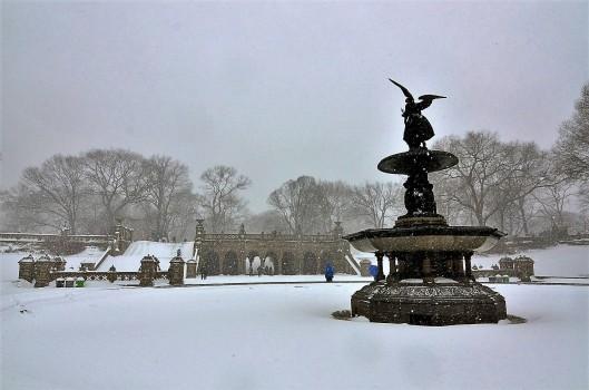 Central Park Jonas