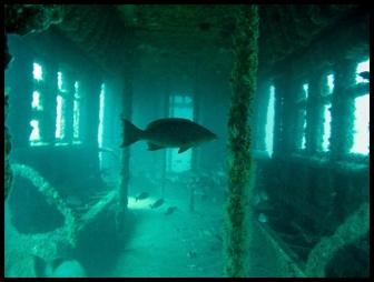 Arrecifes metro