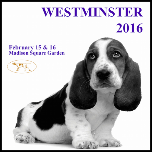 The Westminster Kennel Club 140th Annual Dog Show