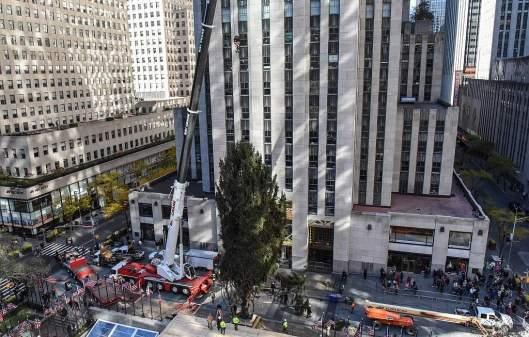 árbol-de-Navidad-en-el-Rockefeller-Center-de-NY