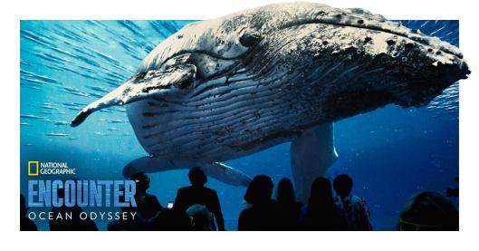 Nat-Geo-Ocean-Odyssey-whale